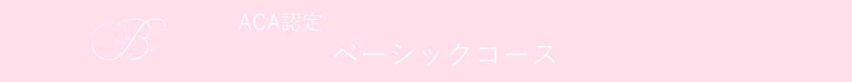 【ACA認定コース】ベーシック